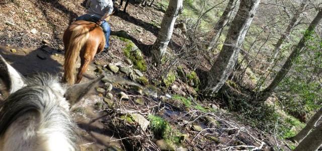 Escapada con ruta a caballo